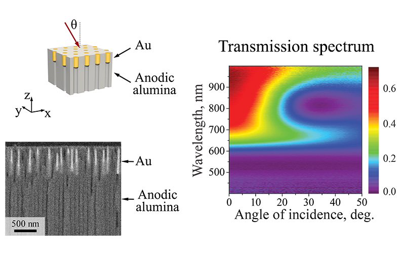 Hyperbolic metamaterials based on arrays of gold nanorods in the matrix of anodic alumina