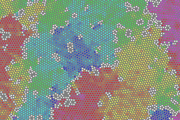 Colour coding algorithm